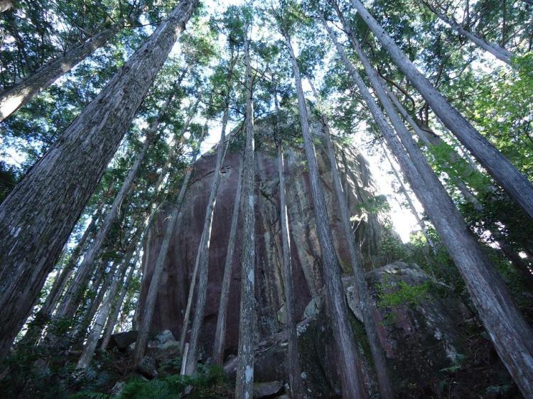 山頂直下 突如目の前に現れる巨岩