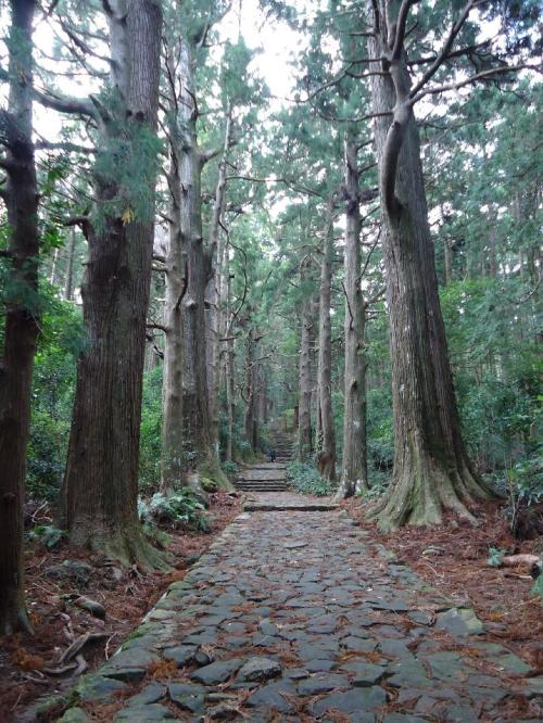 美しい大門坂の古道