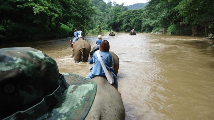渡渉ポイントはは象使いさんとタンデムなので安心