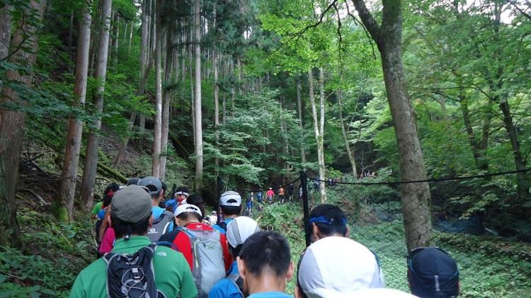 トレイル率90%のコース。最初の林道区間で少しは順位を上げはしたもののすぐに渋滞に捕まる。(´・ω・`)